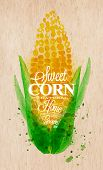 picture of sweet-corn  - Poster with watercolor corn lettering sweet corn natural home grown - JPG