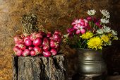picture of red shallot  - Still Life With Shallots red onions on the timber.