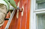 pic of climbing wall  - Painter worker man on ladder paint wooden rural house wall with brush paintbrush near window - JPG