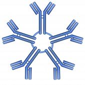 picture of monoclonal  - IgM type antibody molecule pentamer vector illustration - JPG