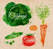 stock photo of leek  - Vegetables set drawn watercolor blots and stains with a spray cabbage - JPG