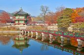 picture of seoul south korea  - Autumn Color at Gyeongbokgung Palace - JPG