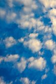 picture of wispy  - The blue sky and white fluffy clouds  - JPG