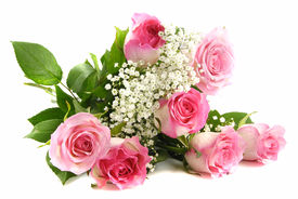 picture of pink rose  - Beautiful pink roses bouquet isolated on white - JPG