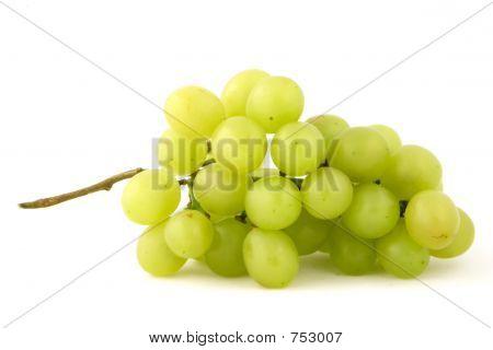 Grape Single