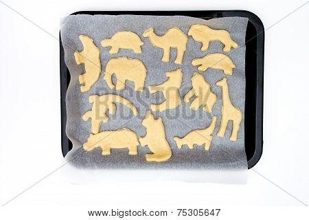 Animal Bisquits