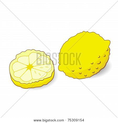 Illustration Of Yellow Lemon Isolated