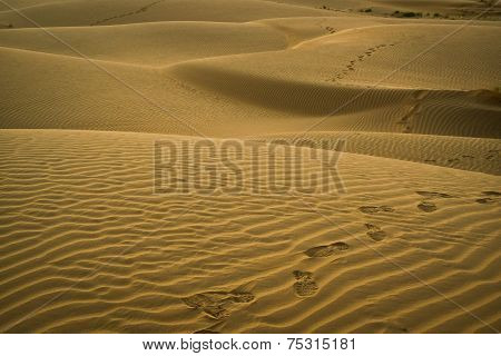 Footsteps On The Dunes