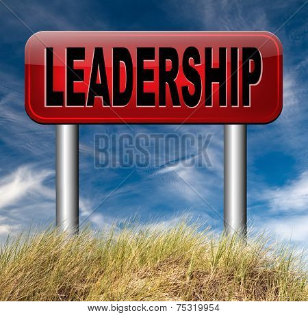 leadership in business and market follow the leader