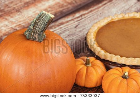 Closeup Of A Pie Pumpkin