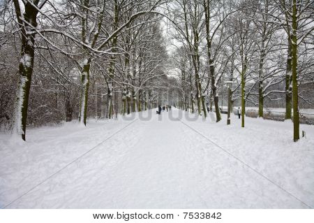 Clara Zetkin Park In Snow