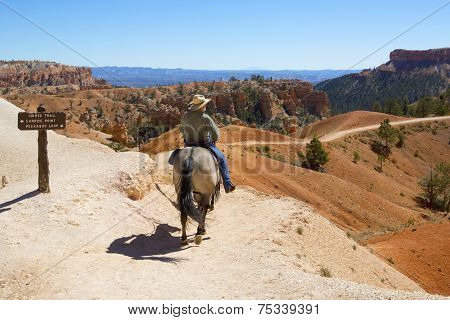 Tourists ride horses on horse trial at Bryce Canyon National Park in Utah