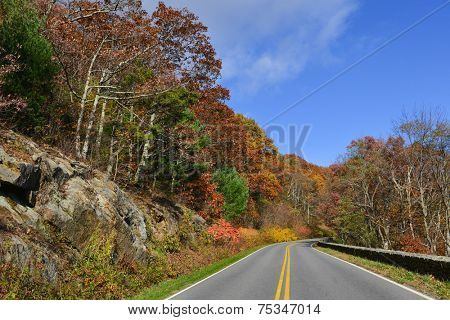 Asphalt road with autumn foliage - Shenandoah National Park, Virginia United States