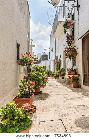 Trullo In Alberobello Street