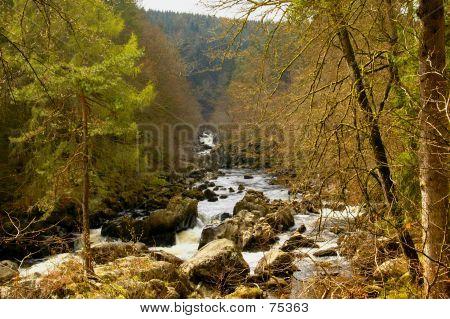 The River Braan