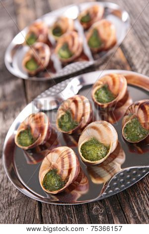bourgogne snail with butter and parsley