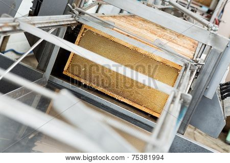Honeycomb frames in extraction plant at beekeeping factory