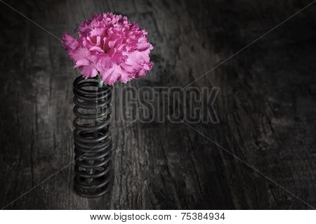 Single Flower In Metal Spring On Grunge Wood Surface Artistic Conversion