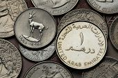 stock photo of dirhams  - Coins of the United Arab Emirates - JPG