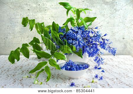 Still Life Bouquet Polygonatum Blue Tones White Crockery