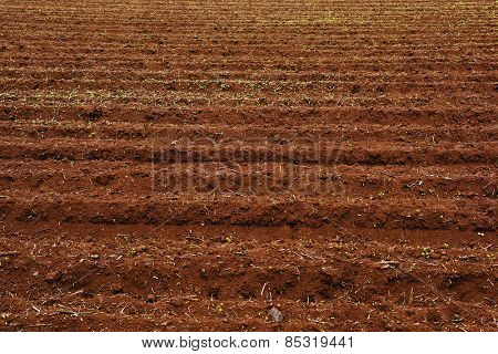 Background image of a plowed field