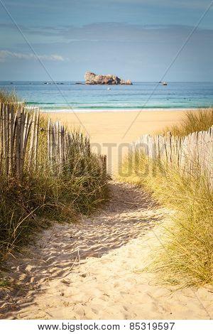 Vintage Beach Postcard Landscape