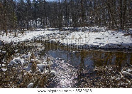 Winter Trout Stream
