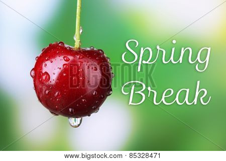 Spring break concept. Ripe sweet cherry with drops close up