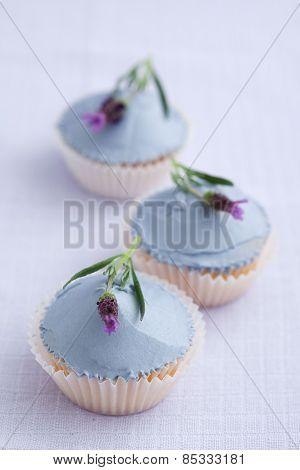 Three lavender cupcakes