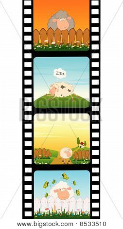 colorful strip with sheep