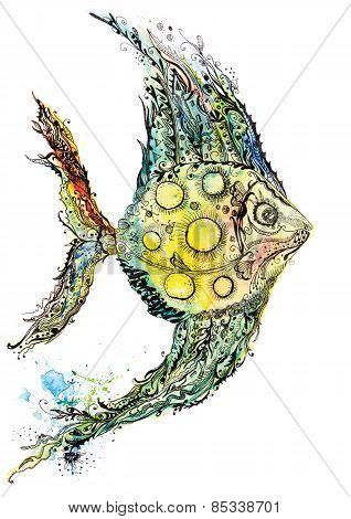 Watercolor fish illustration