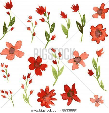 Set of watercolor drawing red flowers