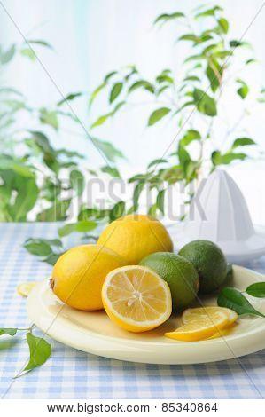 Ripe lemons being used to make fresh lemonade