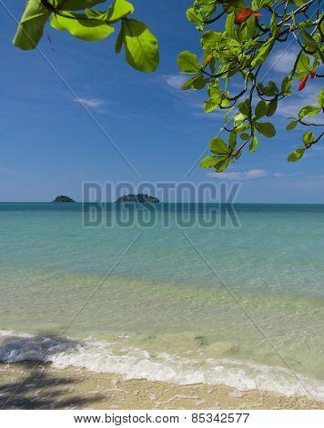Idyllic Coast Green Getaway