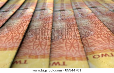 Lined Up Close-up Banknotes