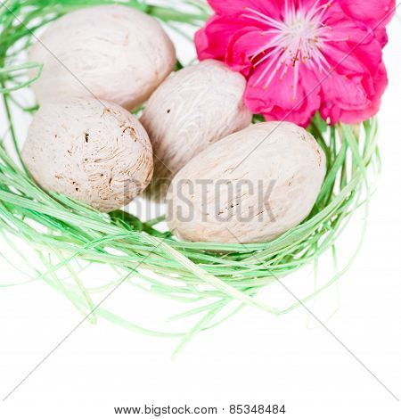 Closeup Of Green Nest With Eggs