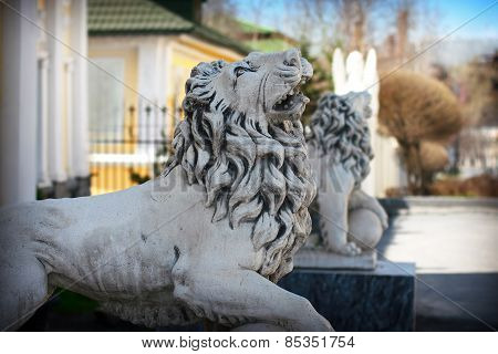 Statue Of Lion