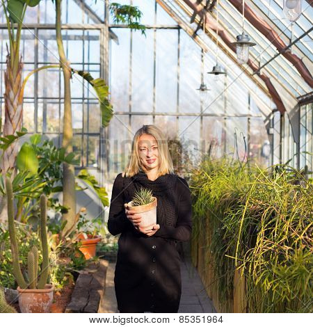 Florists woman working in greenhouse.