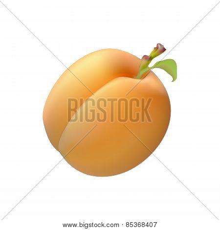 Ripe Juicy Yellow Fruit Apricot Realistic Image