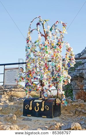 Wish Tree In Crimea