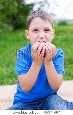 Boy Holding Red Apple By Two Hands And Nibbling