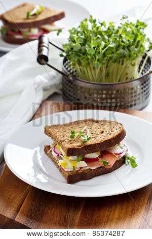 Sandwich with smoked salmon, radishes and egg
