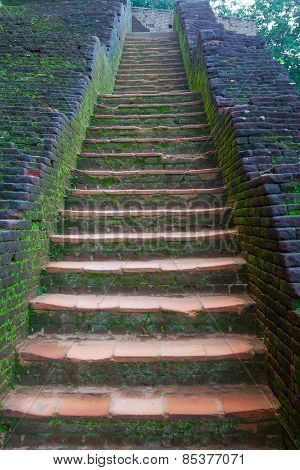 Ancient Stone Staircase In Sigiriya  Sri Lanka