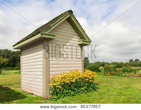 Garden Shed With Black-eyed Susans