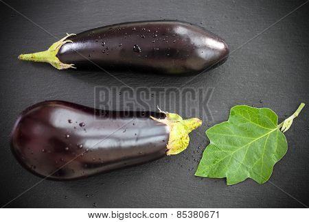 Fresh Eggplants With Leaves