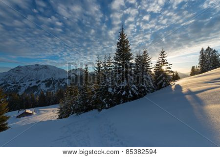 sunset in austrian alps with last sunbeams through trees at winter