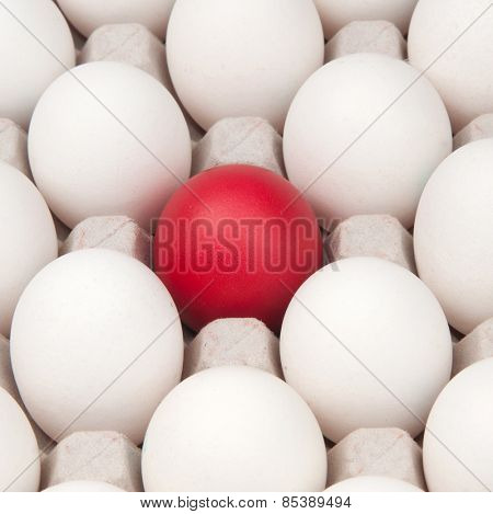 white eggs with one red egg