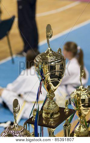 Taekwondo Championship Cups