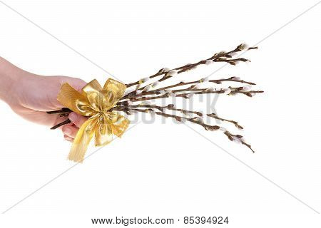 Easter catkins with golden ribbon