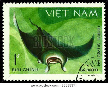 Vintage  Postage Stamp. Myliobatis Tobijei.